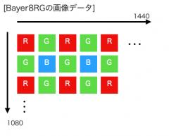 Bayer8rg